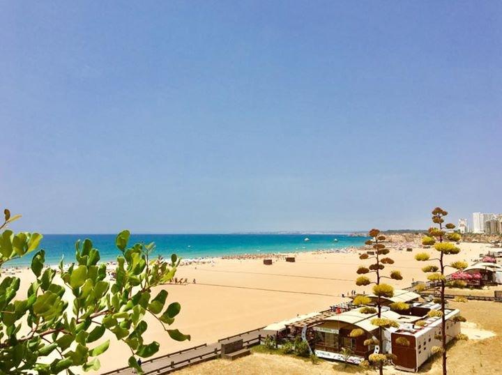 Location appartements et villas de vacance, Praia da Rocha  (Portimão) à Portimão, Portugal Algarve, REF_IMG_3194_3200