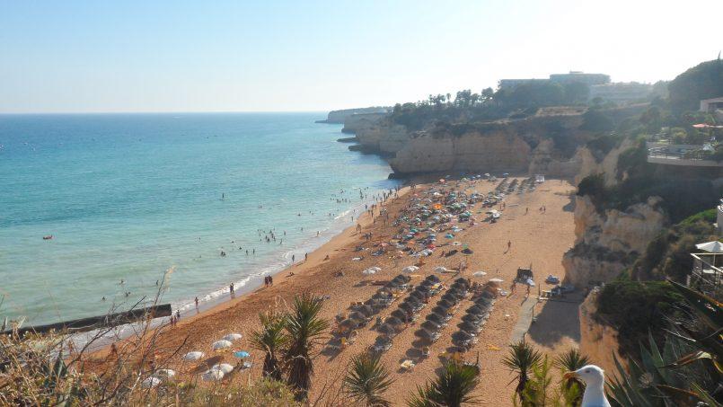 Location appartements et villas de vacance, Rising Sun Balconies Apartment à Porches, Portugal Algarve, REF_IMG_736_4027