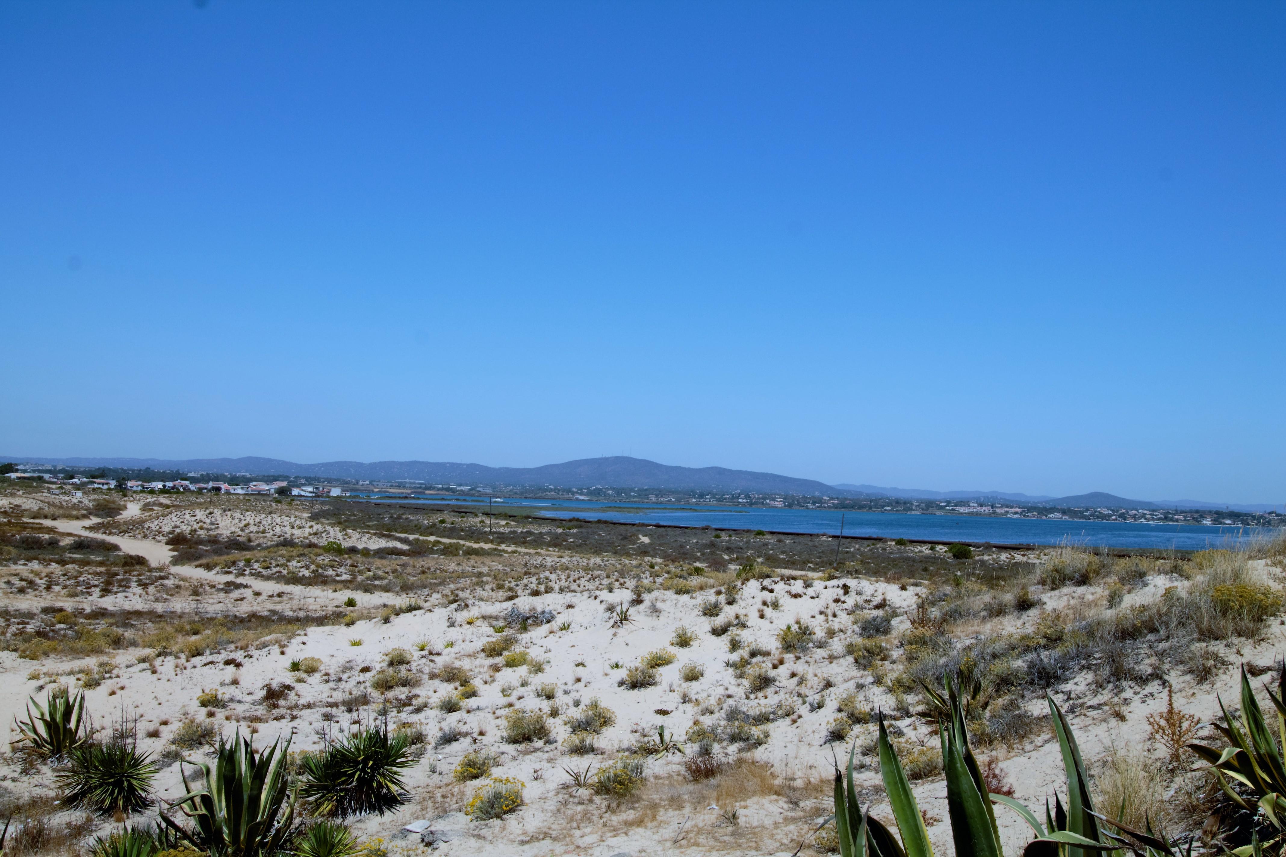 Holiday apartments and villas for rent, Moradia no Algarve com vista mar 10 mint da praia (a pé) in Olhão, Portugal Algarve, REF_IMG_6691_6708