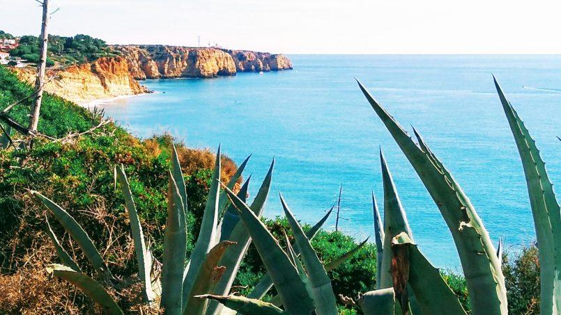 Apartamentos e moradias para alugar, Magnifique appartement face à l'océan em Lagos, Portugal Algarve, REF_IMG_7779_7794