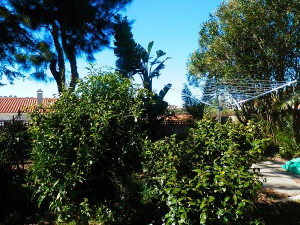 Apartamentos e moradias para alugar, Casa Sossego em Aljezur, Portugal Algarve, REF_IMG_7472_7479