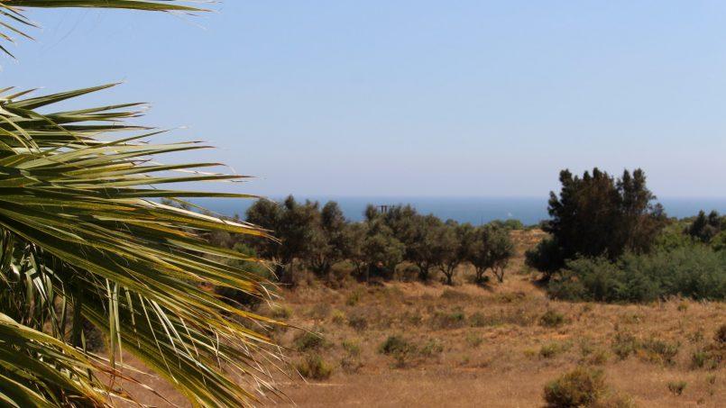 Apartamentos e moradias para alugar, Appartement avec piscine et terrasse – Porches em Porches (8400), Portugal Algarve, REF_IMG_8812_8820