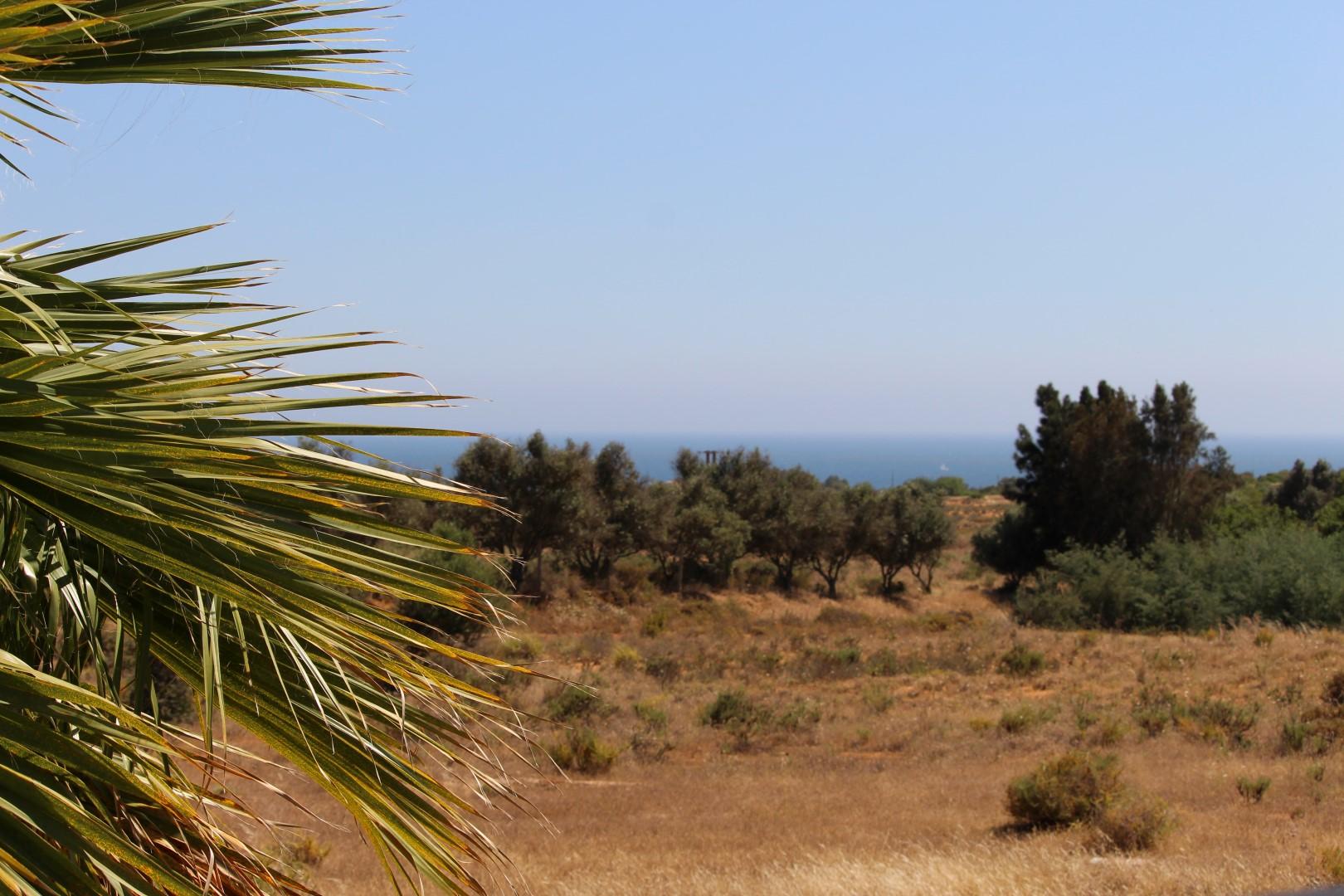 Location appartements et villas de vacance, Appartement avec piscine et terrasse – Porches à Porches (8400), Portugal Algarve, REF_IMG_8812_8820
