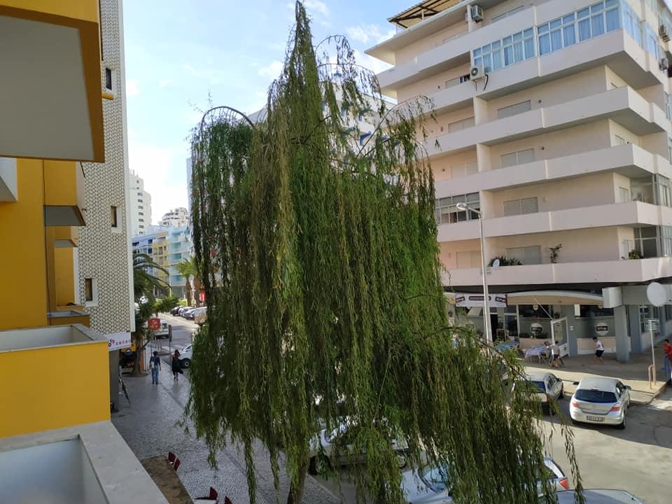 Apartamentos e moradias para alugar, Excelente apartamento T2 a 100 metros da praia totalmente remodelado em Armação de Pêra, Portugal Algarve, REF_IMG_10481_10557