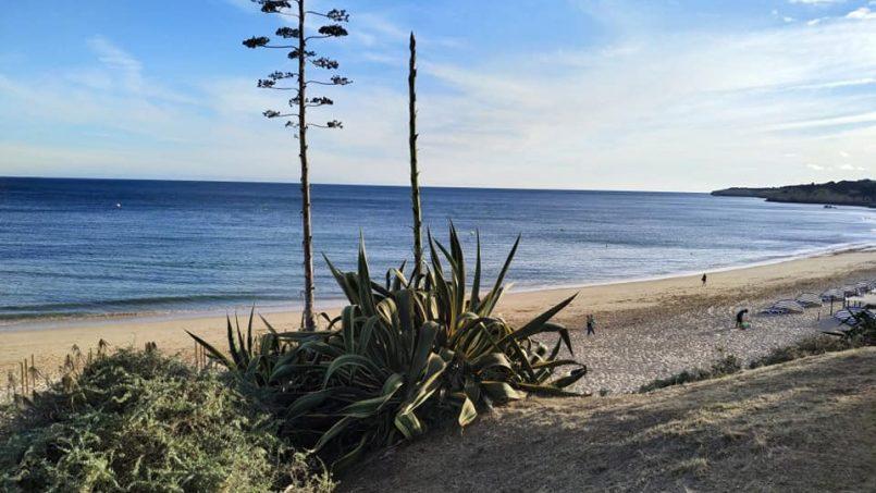 Apartamentos e moradias para alugar, Excelente apartamento T2 a 100 metros da praia totalmente remodelado em Armação de Pêra, Portugal Algarve, REF_IMG_10481_10558