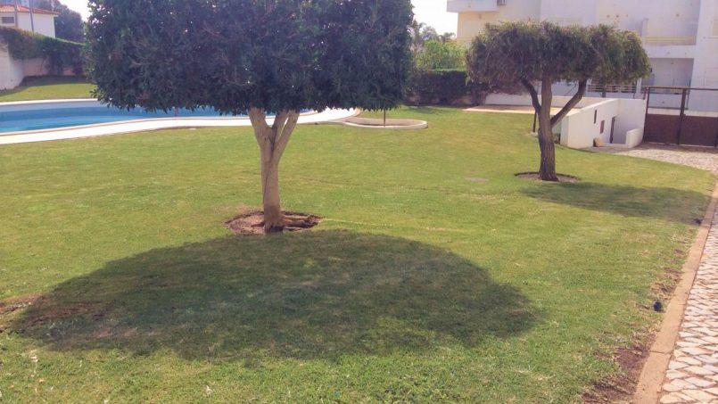 Location appartements et villas de vacance, Apartment in Albufeira T1 with pool à Albufeira, Portugal Algarve, REF_IMG_10212_10248