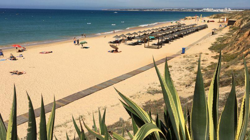 Apartamentos e moradias para alugar, Casa do Cipreste em Albufeira, Portugal Algarve, REF_IMG_10888_10905