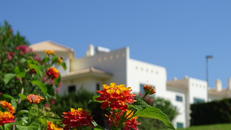 Apartamentos e moradias para alugar, Rentalbufeira em Albufeira, Portugal Algarve, REF_IMG_14844_14851
