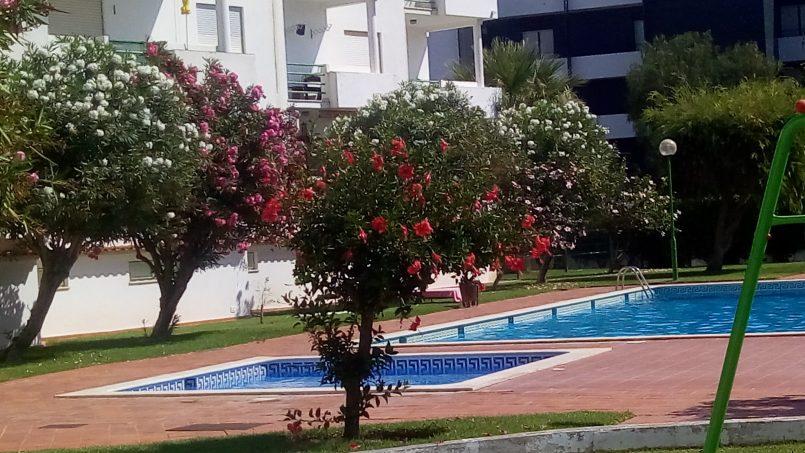 Location appartements et villas de vacance, Apartamento 4 pessoas à beira mar com piscina Albufeira à Albufeira, Portugal Algarve, REF_IMG_15094_15097