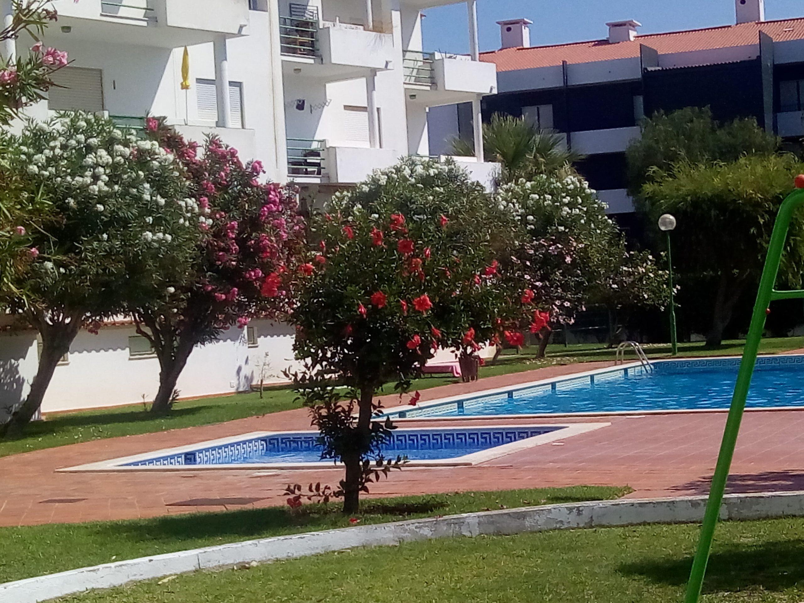 Holiday apartments and villas for rent, Apartamento 4 pessoas à beira mar com piscina Albufeira in Albufeira, Portugal Algarve, REF_IMG_15094_15097